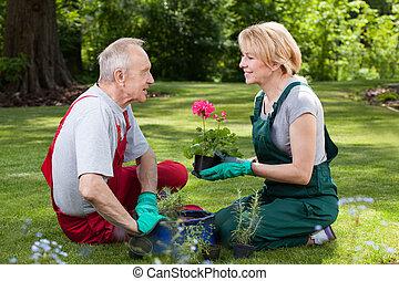 parlare, coppia, sposato, giardino