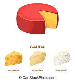 Parmesan, roquefort, maasdam, gauda. Different types of cheese set collection icons in cartoon style vector symbol stock illustration web.