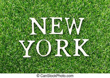 parola, lettera, alfabeto, legno, verde, york, fondo, nuovo, erba