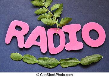 parola, radio