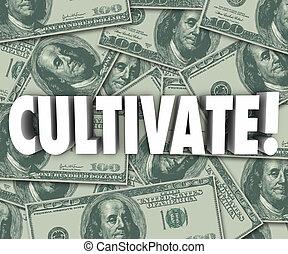 parola, ricchezza, soldi, fondo, lettere, coltivare, crescere, 3d