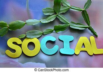 parola, sociale