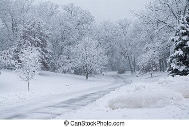 parque, arado, distancia., nieve, nevada