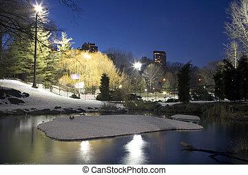 parque central, en, invierno