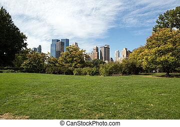 parque central, en, nueva york