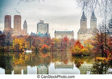 parque central, en, otoño, mañana