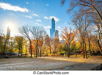 parque central, en, soleado, día de otoño