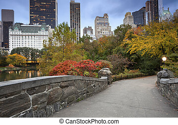 parque central, manhattan, skyline.