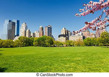 parque, central, york, primavera, nuevo