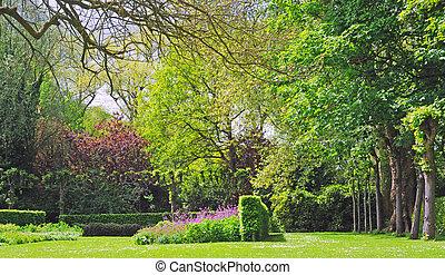 parque, con, árboles, arbustos, y, flores púrpuras, en, tiempo del resorte