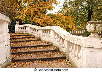 parque, con, blanco, escalera, y, hojas caídas, otoño, estación
