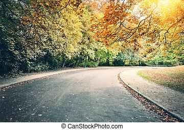 parque de la ciudad, callejón, en, soleado, día de otoño