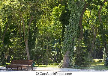 parque de la ciudad, verde