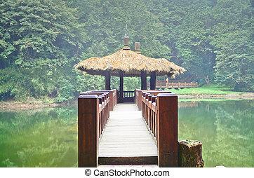 parque, diversión, taiwán, alishan, bosque