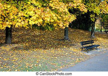 parque, en, el, otoño