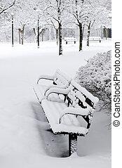 parque, invierno