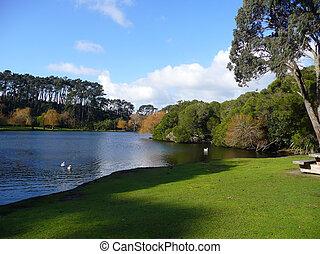 parque, lago, auckland