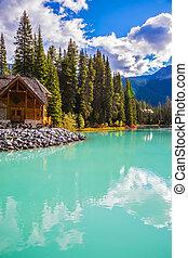 parque nacional, campamento, yoho