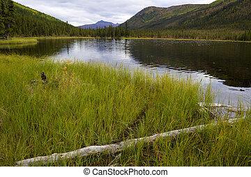 parque nacional, denali, triple, lagos
