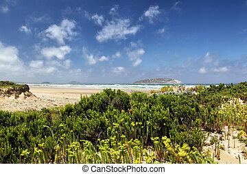 parque nacional, promontorio, costero, wilsons, paisaje