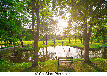 parque, pôr do sol, bonito