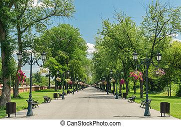 parque público, callejón