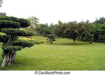 parque, paisagem