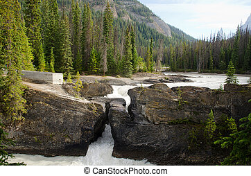 parque, puente, nacional, natural, yoho