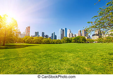 parque, soleado, central, día