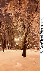 parque, tarde, invierno, farolas, kharkiv