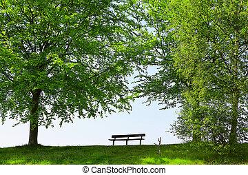 parque verde, banco