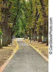 parque verde, com, árvores