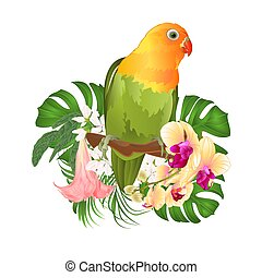 Parrot Agapornis lovebird and Brugmansia with yellow orchid vector