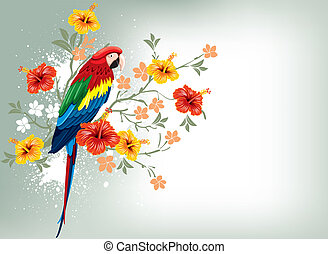 Parrot and tropical flowers - Bright parrots sitting on a ...