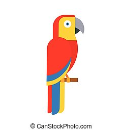 Parrot bird breed species animal nature tropical parakeets education colorful pet vector illustration