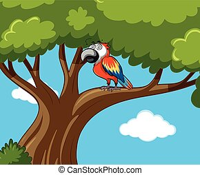 Parrot bird on the branch