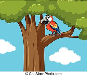 Parrot bird on the tree branch