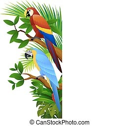 parrot bird - vector illustration of parrot