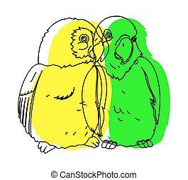 Parrot Birds Drawing Vector