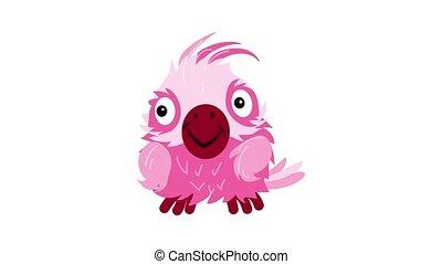 Parrot cockatoo icon animation