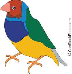 Parrot color 01