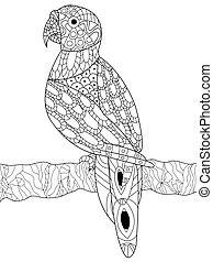 Parrot coloring vector for adults