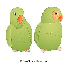Parrot Couple - Cartoon Cute Green Parrot Birds Vector...