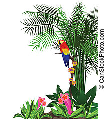 Parrot - Illustration of a parrot in the forest