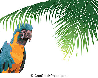 Parrot in the forest