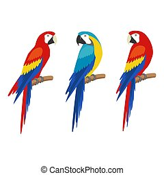 Parrot set. Isolated on white background.