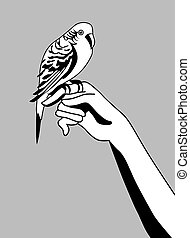 parrot silhouette on gray background, vector illustration