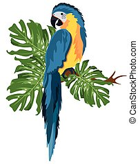 Parrot sitting on a tree branch