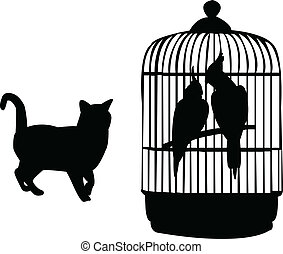 Parrots and cat