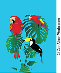 2 parrots of different ages and a tuscan sitting on a tropical tree leaf...